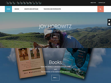 Joy Horowitz website